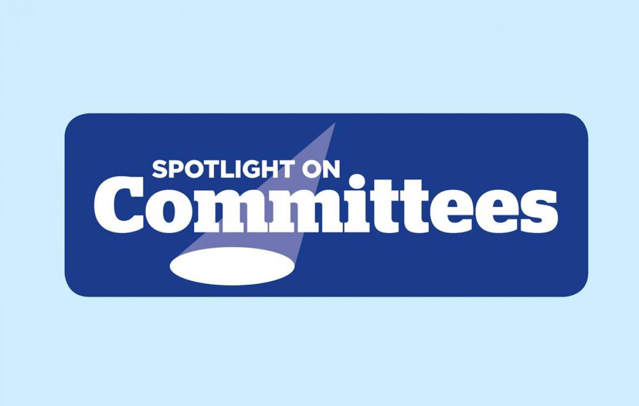 spotlight_committees